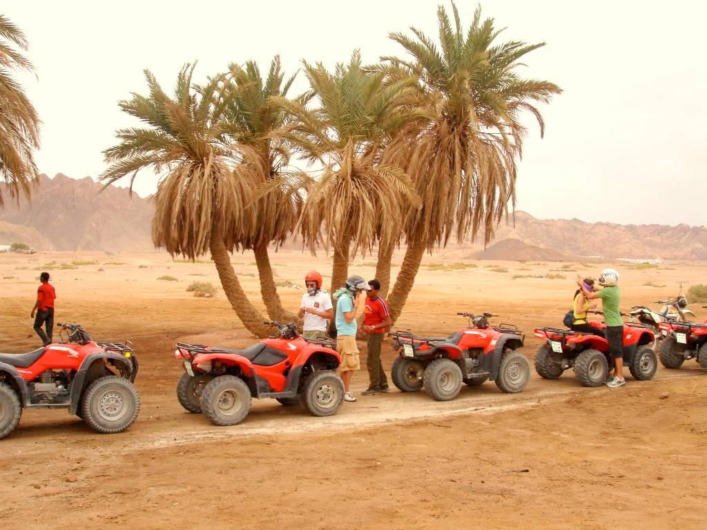 Book a best desert safari tour in Dubai 1